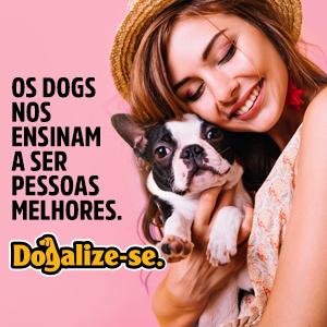 Os dogs nos ensinam a ser pessoas melhores